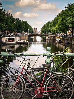 Buying cannabis in The Netherlands, what you need to know as a tourist
