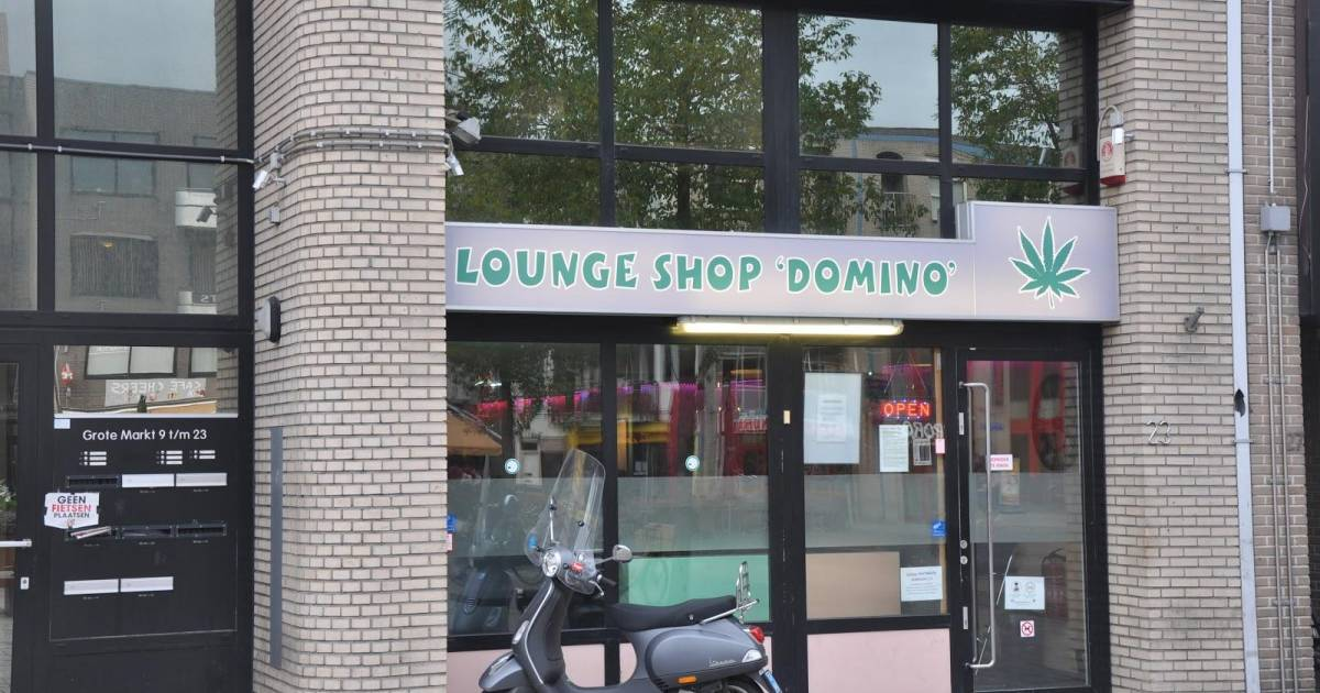 Coffeeshop Loungeshop Domino in Almere | DutchCoffeeshops.com