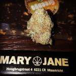 Coffeeshop Mary Jane